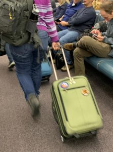 push, pull, or carry luggage when traveling